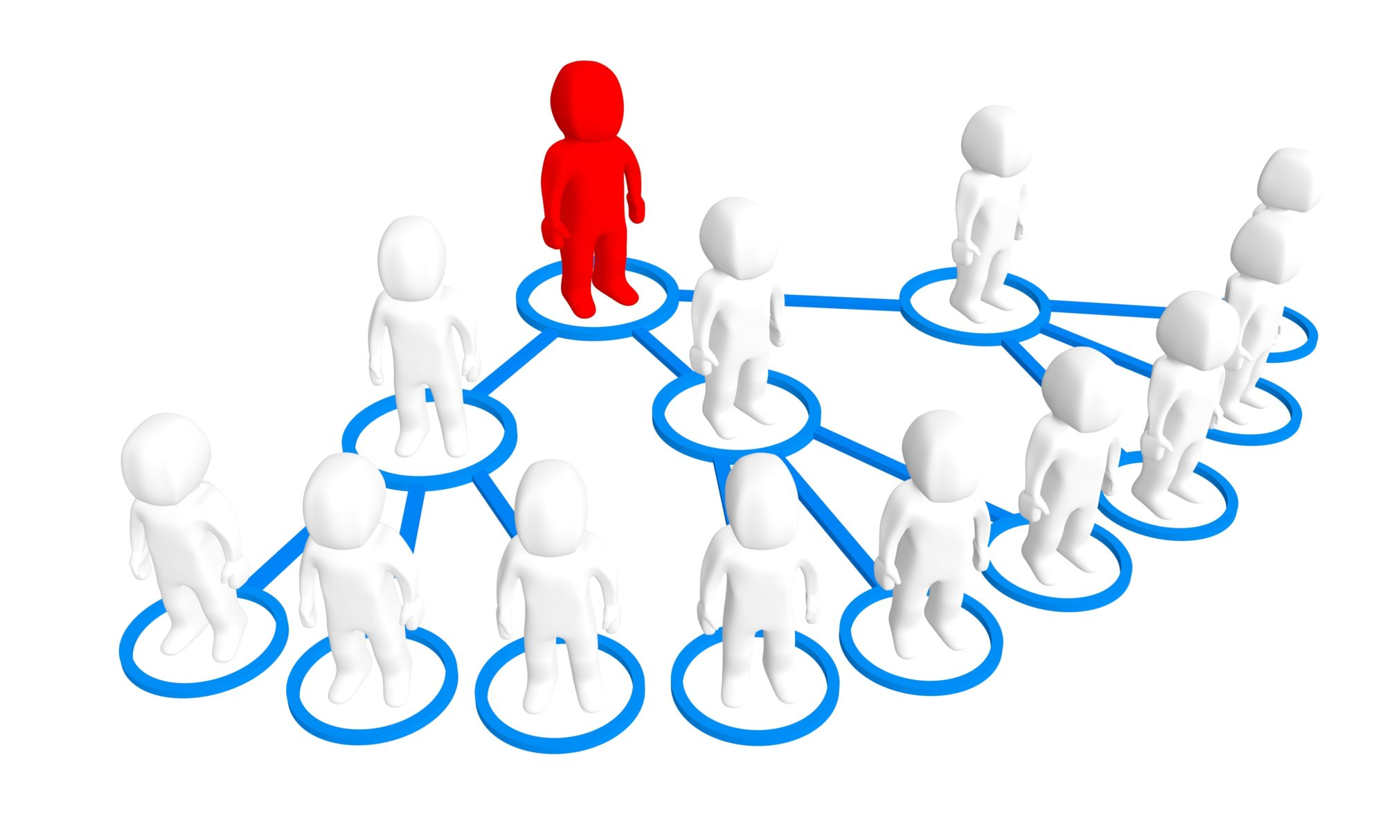 You Can Succeed in Network Marketing